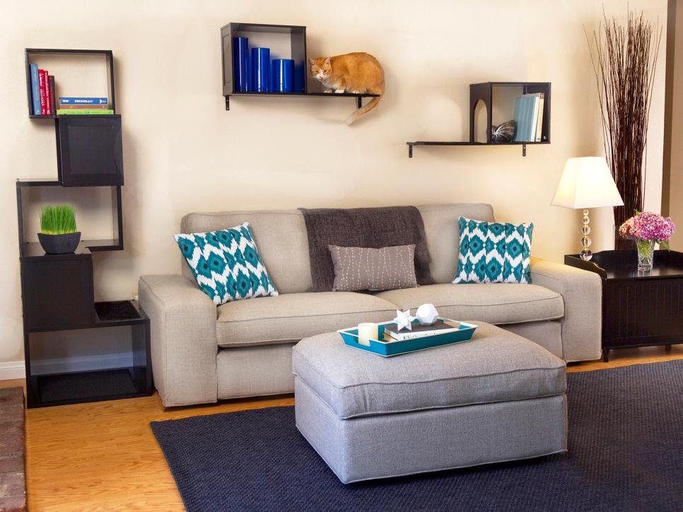 Cute pets in our favorite spaces interior design styles for 15 x 11 living room