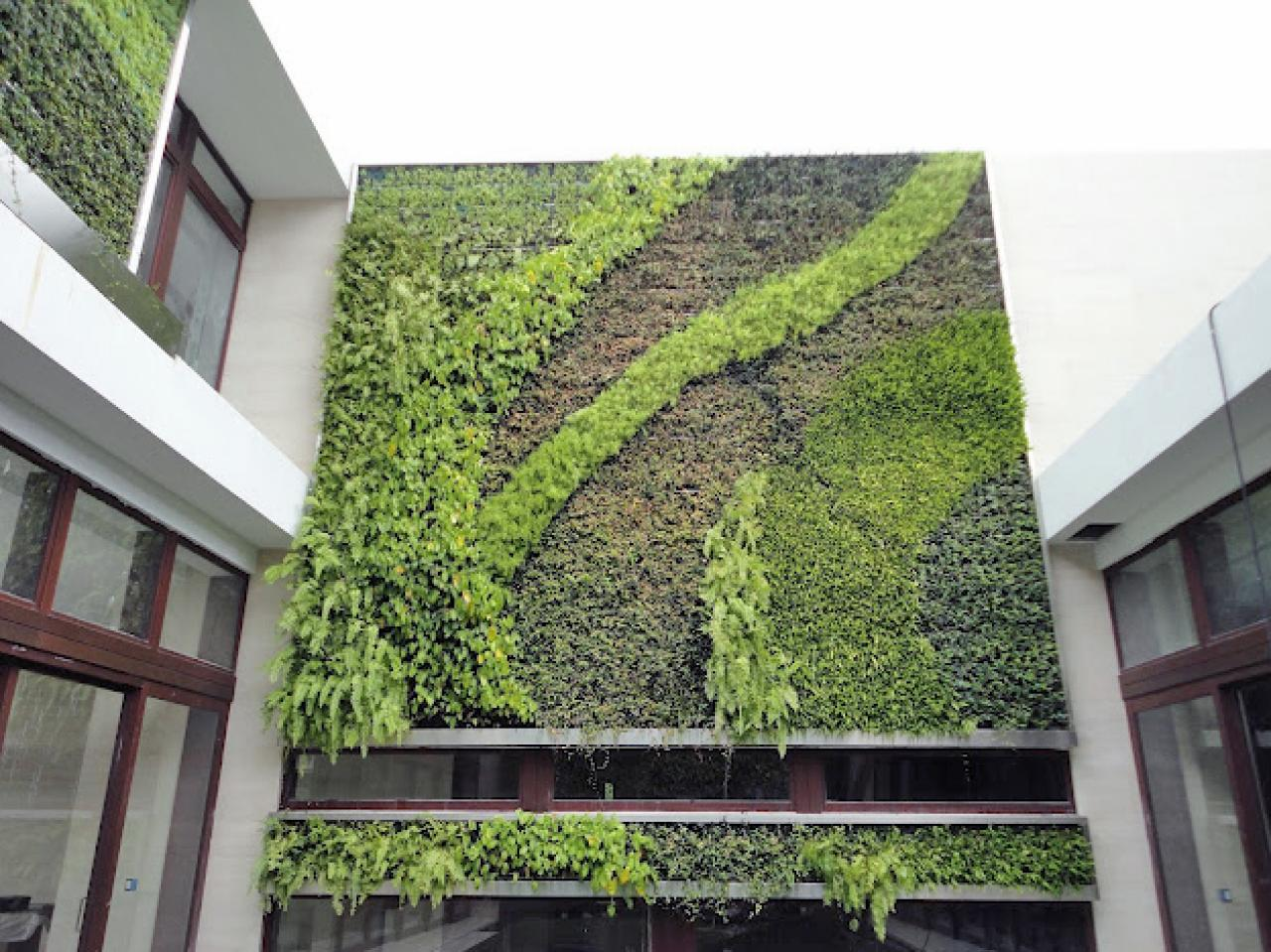 Design trend living walls outdoor spaces patio ideas for Wall plants outdoor