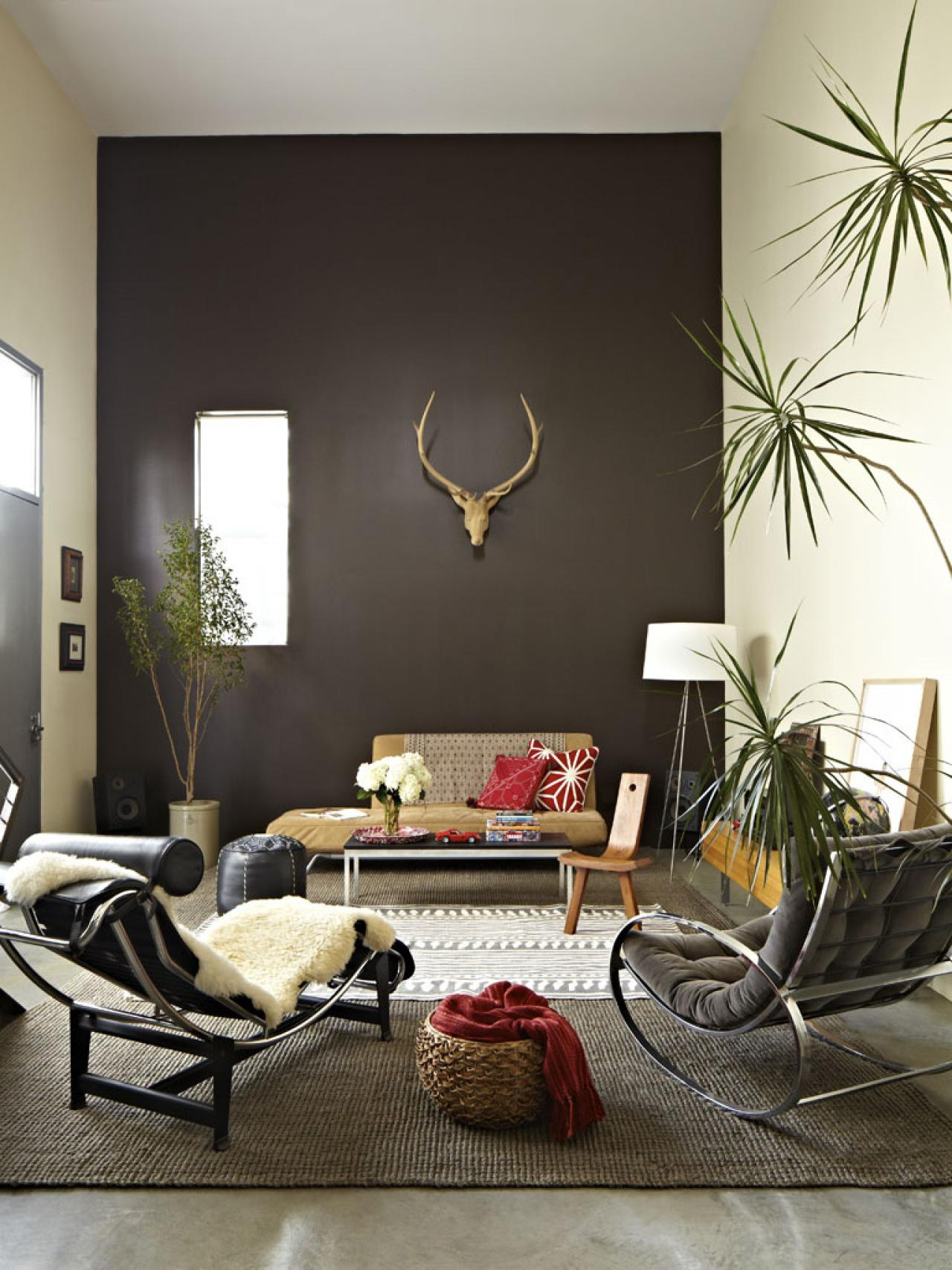 Photos hgtv Brown wall color living room