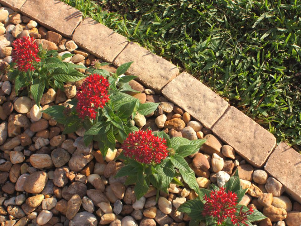 How to Install Garden Edging HGTV