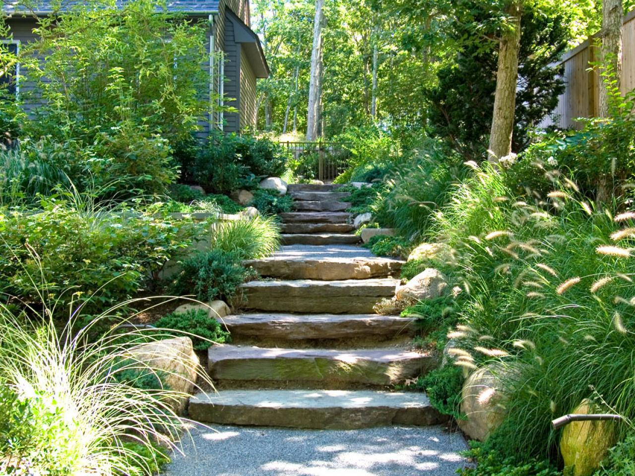 Photos hgtv for Outdoor ornamental grasses