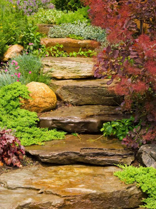 Boulder Pathway With Surrounding Plants