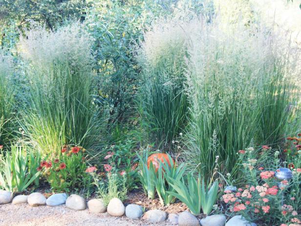 Ornamental Grass Bed