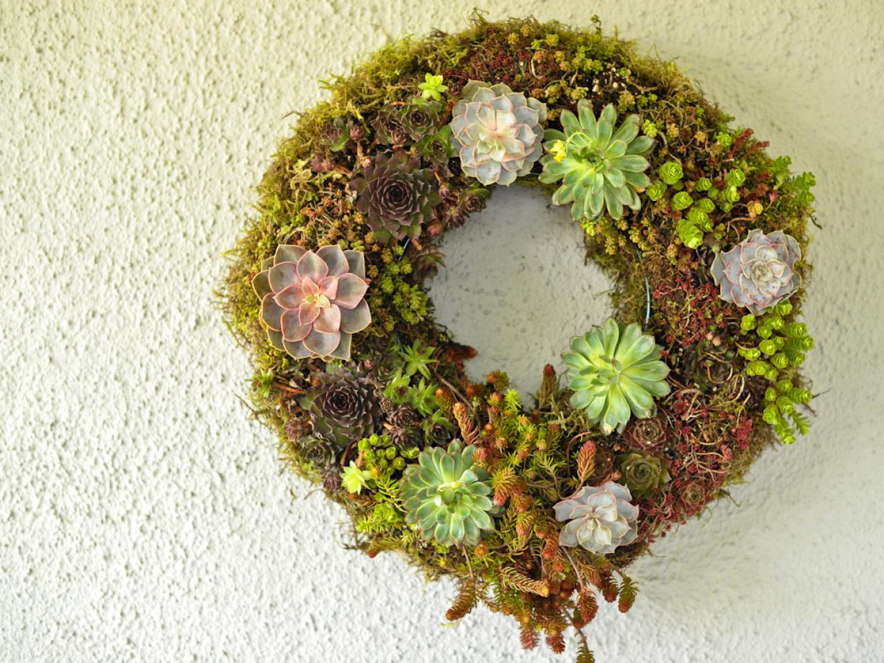 Make A Living Wreath For Spring HGTV