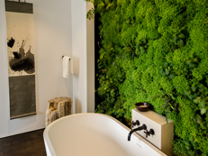White Modern Bathroom With Lush Living Wall