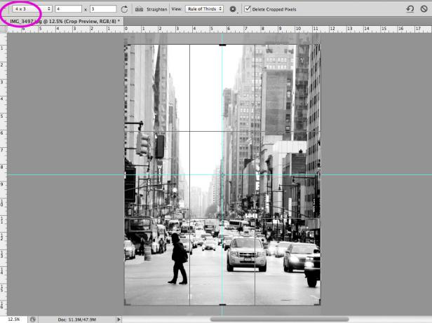 Original_Chelsea-Costa-Photo-Mural-Step2_h