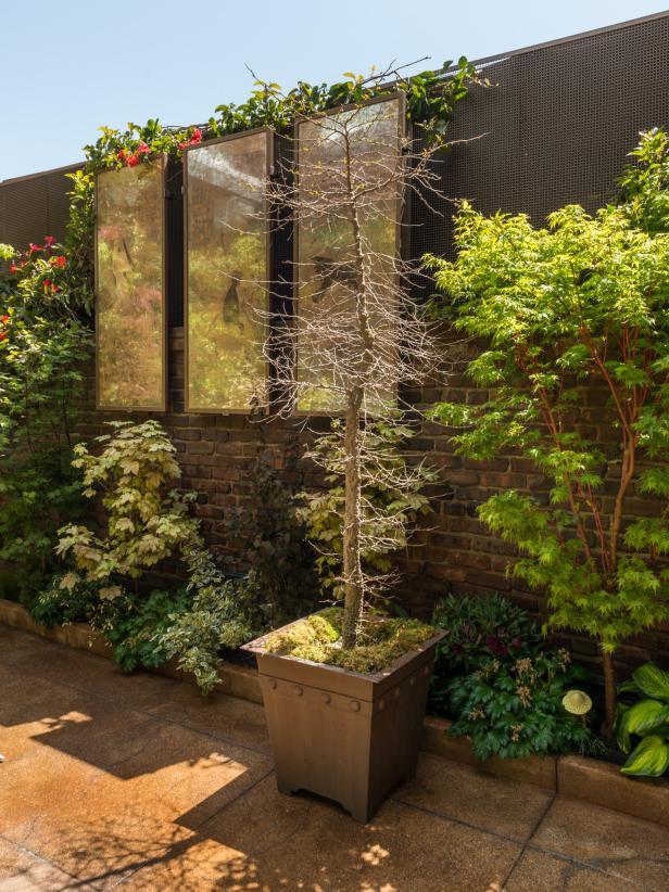 Outdoor Courtyard with Garden Artwork
