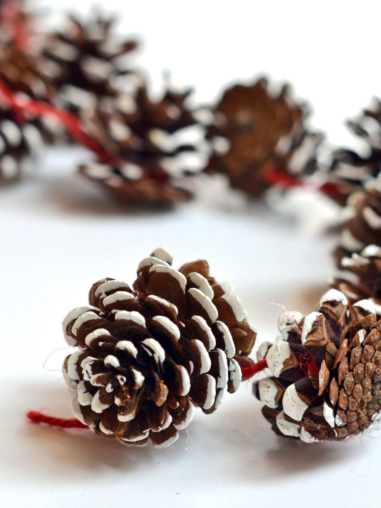diy holiday pinecone garland hgtv. Black Bedroom Furniture Sets. Home Design Ideas
