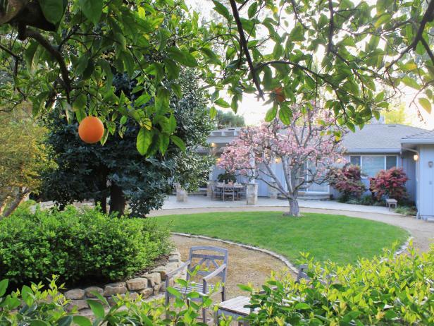 Lush Backyard With Circular Walkway, Orange Tree, Stone Retaining Wall