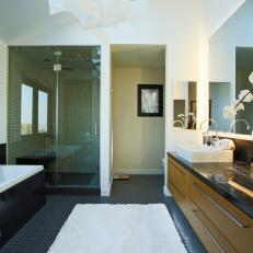 Modern Master Bathroom With Glass Shower