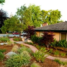 Aesthetic-Gardens_Cal-Native-Landscape_Walk