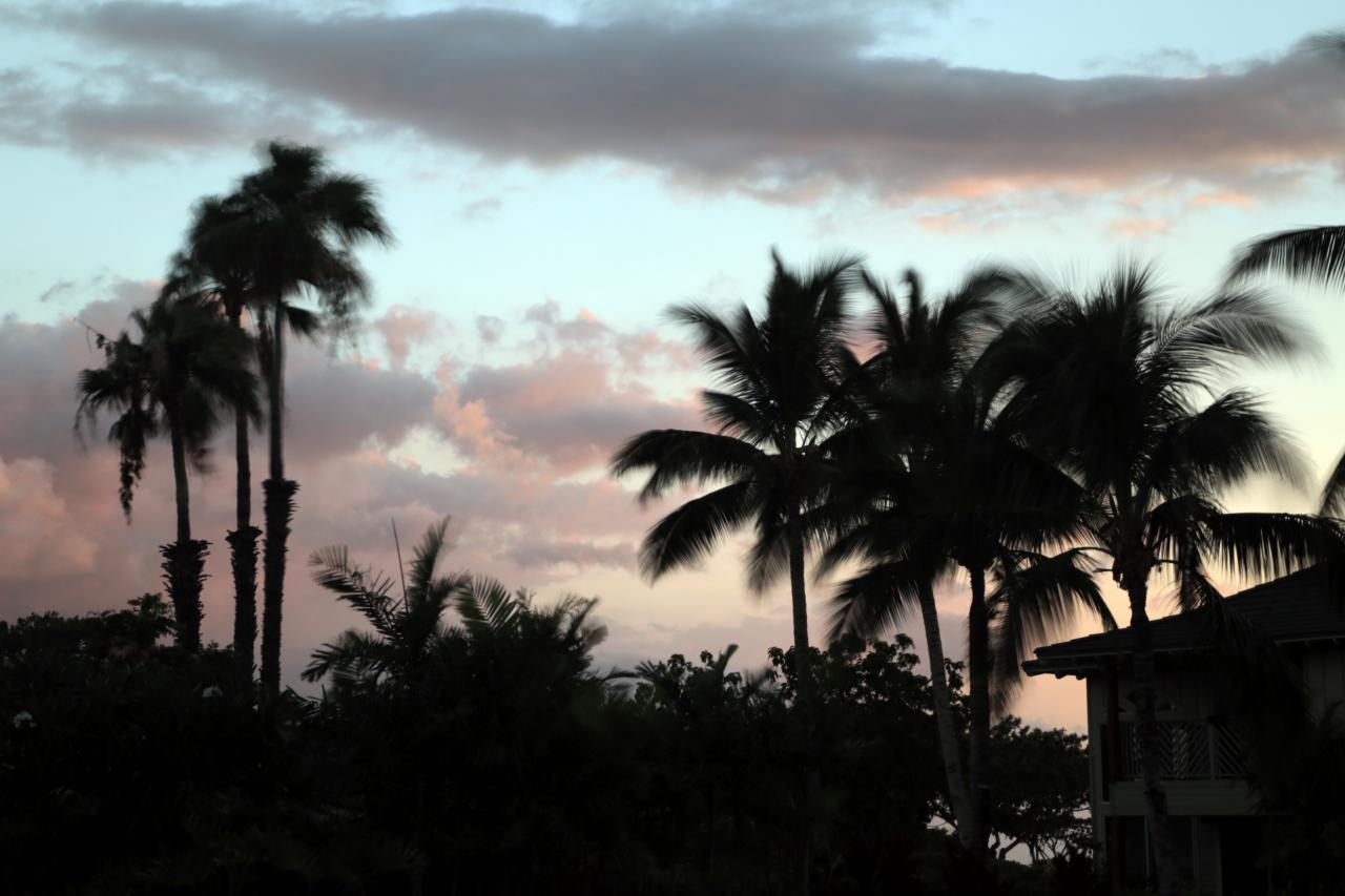 Snapshot gallery a first look at building hawaii building hawaii