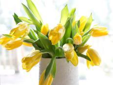 BPF_Spring-House_interior_spring-flowers_tulips_v