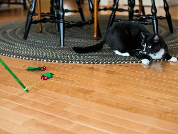 Entice your cat to play with the spinner wand by dragging the holly across the ground or spinning it through the air.