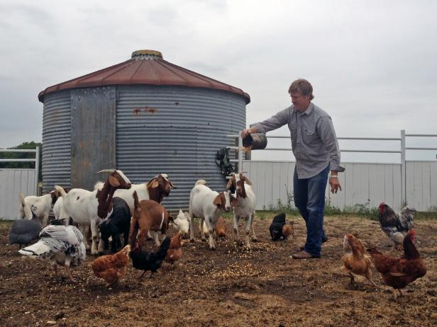 Chip Gaines Feeding Goats and Chickens