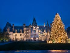 Biltmore House Entrance and Decorated Christmas Tree at Night