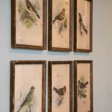 After: Avian Prints