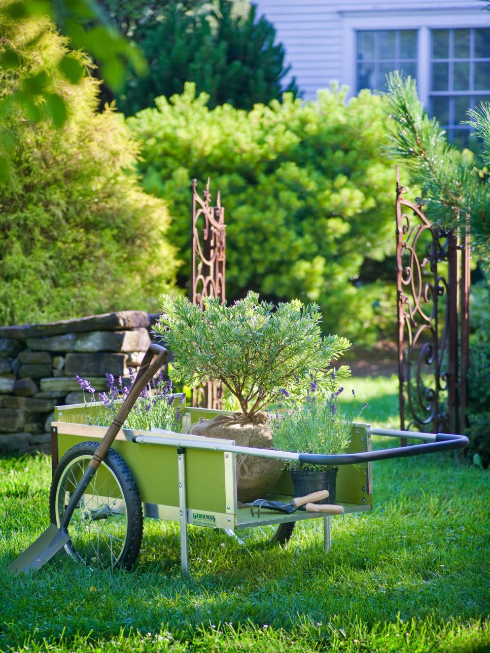 worst winter gardening mistakes hgtv