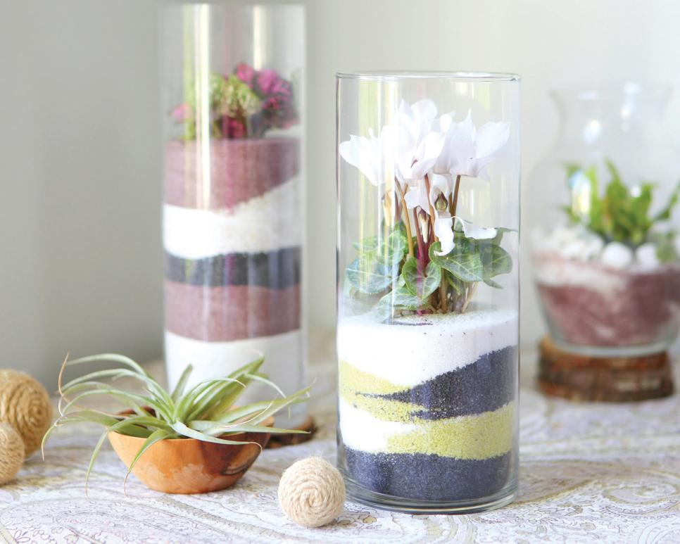 - Make A Sand Art Terrarium HGTV