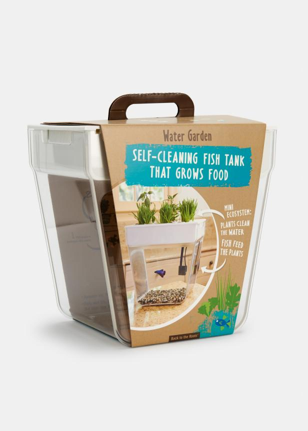 An Aquaponic Garden for Kids