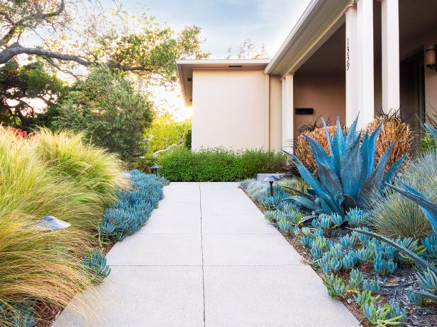 Contemporary House Landscaping