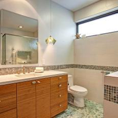 Contemporary Bathroom Features Mosaic Tile Accent Strip