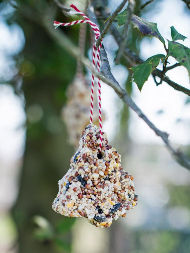 Kids Crafts-Birdseed Ornaments