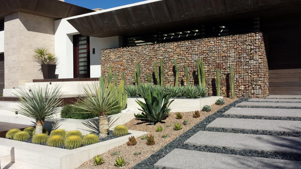 Eco friendly front yard landscaping 2015 fresh faces of Modern desert landscaping ideas