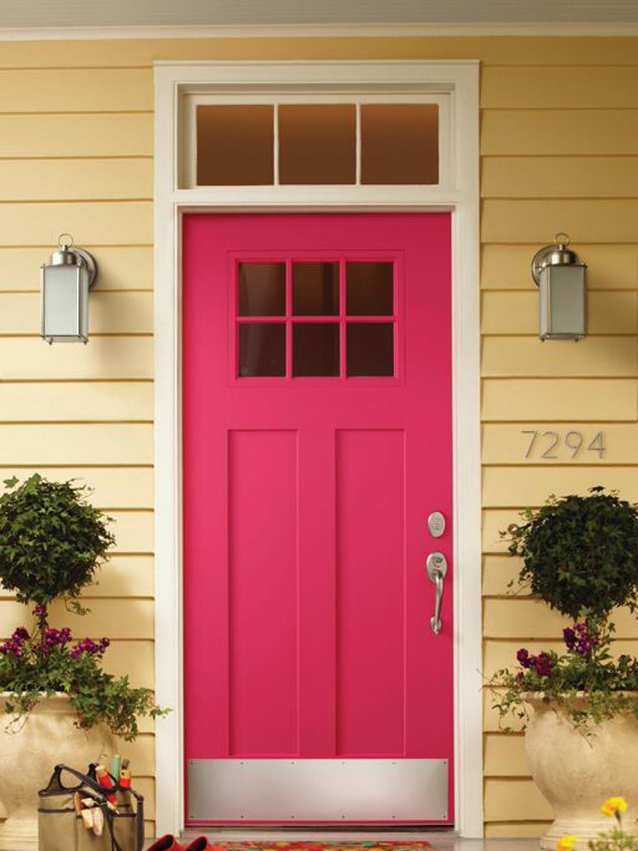 Front Door And Plant Color Combos Landscaping Ideas And