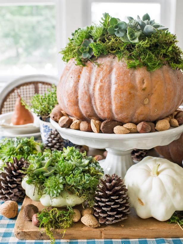 With succulents trending in home decor and gardening, it's the perfect time to incorporate them in your holiday tablescape. Live succulents are clipped and used to top off seasonal pumpkins and squash to make a dramatic centerpiece.