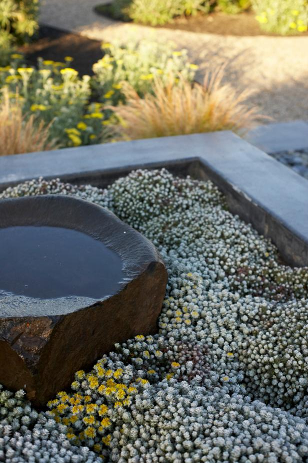 Japanese Garden with Stone Water Feature and Small Flowers