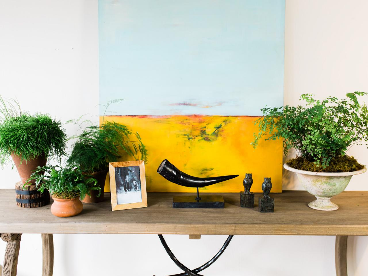 Photos hgtv for Sofa table for plants