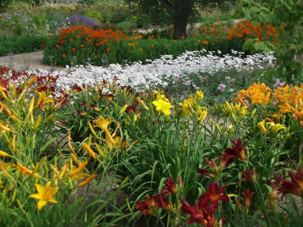Perennial Plant Garden Design basic design principles and styles for garden beds Here Are Some Basic Tips For Laying Out A Perennial Garden Youll Love For Years