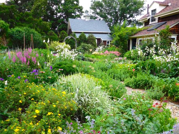 A Cottage Garden's Colorful Planting Palette