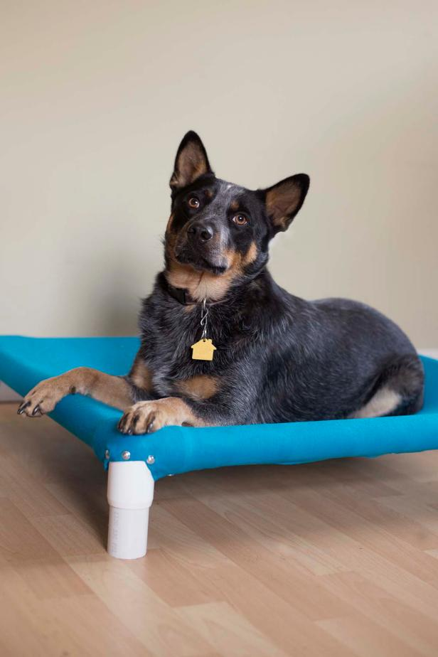 Raised Dog Bed Cover Vert