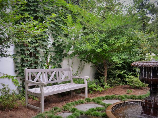 Tranquil Garden With Bench