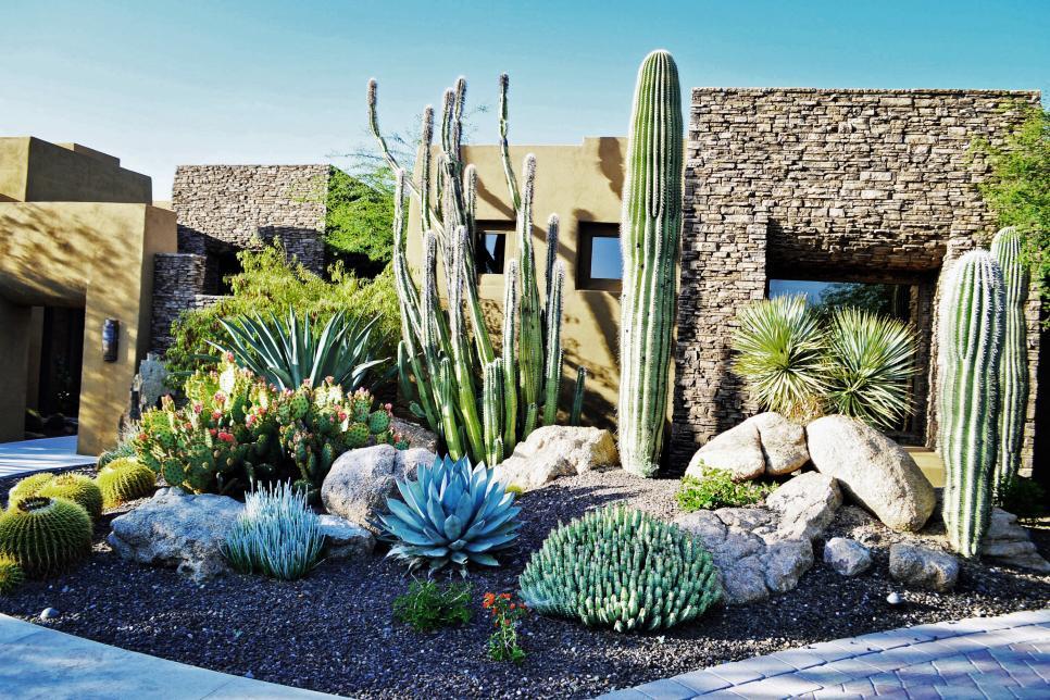 southwestern cactus garden hgtv ultimate outdoor awards. Black Bedroom Furniture Sets. Home Design Ideas