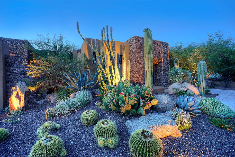 Southwestern cactus garden hgtv ultimate outdoor awards for Land design landscaping