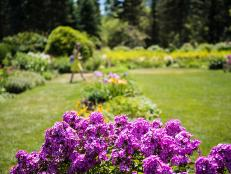Nichols Arboretum, Joe Mooney