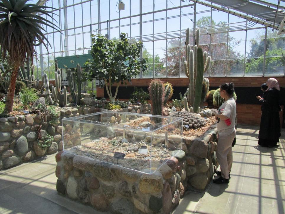Take a botanical break in ann arbor hgtv urban oasis 2016 behind the design hgtv for University of michigan botanical gardens