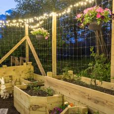 Raised Garden With Hanging Flower Plants