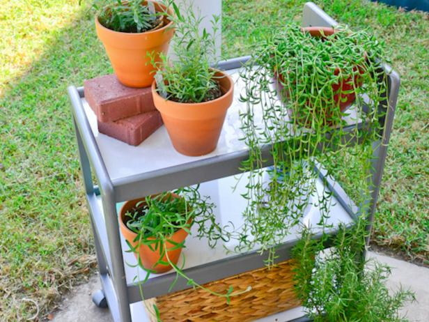 Bar Cart with Container Plants on Patio