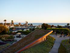 Rooftop Garden With Ocean View