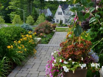 Front Walkway With Lush Landscaping