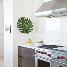 White Modern Kitchen With Palm Leaf