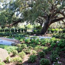 New Orleans Botanical Garden Arrival Garden