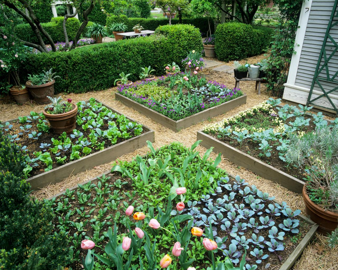 Lovely Raised Bed Garden Design