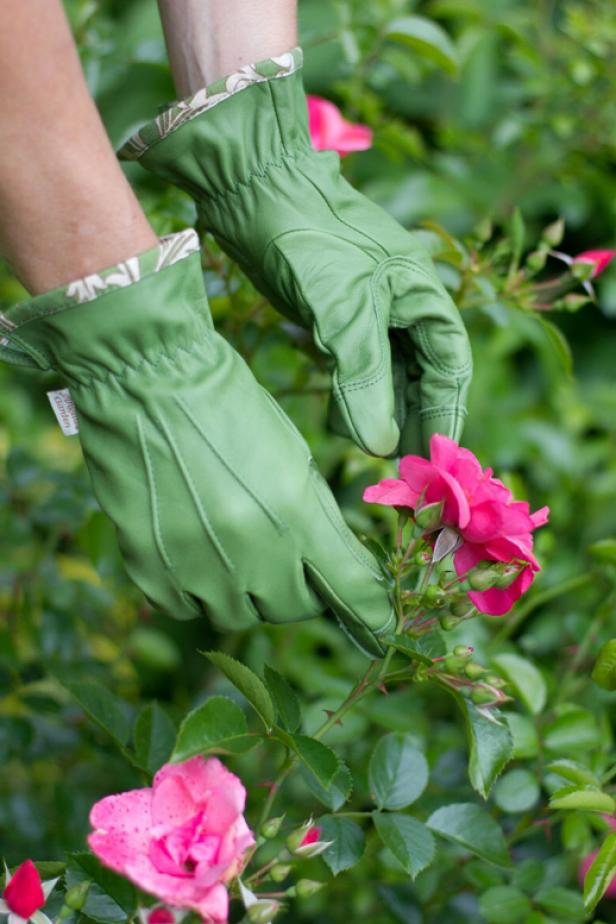 Angela's Garden Gloves