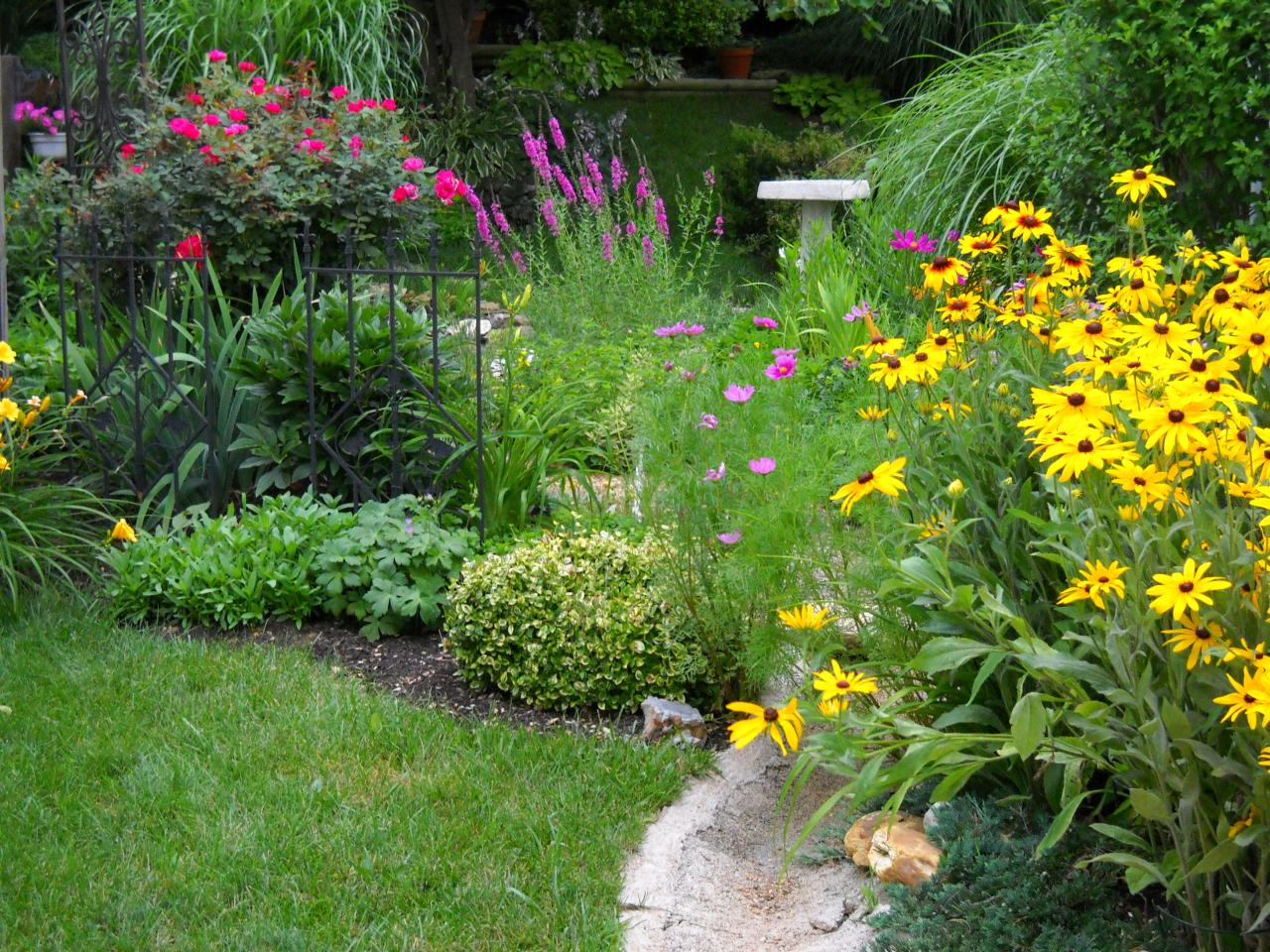 Rain garden design hgtv for Pictures of designs