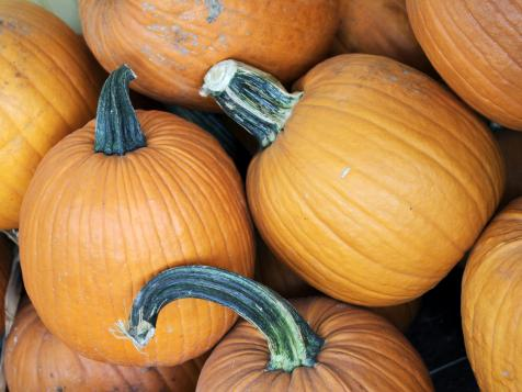 When to Plant Pumpkins